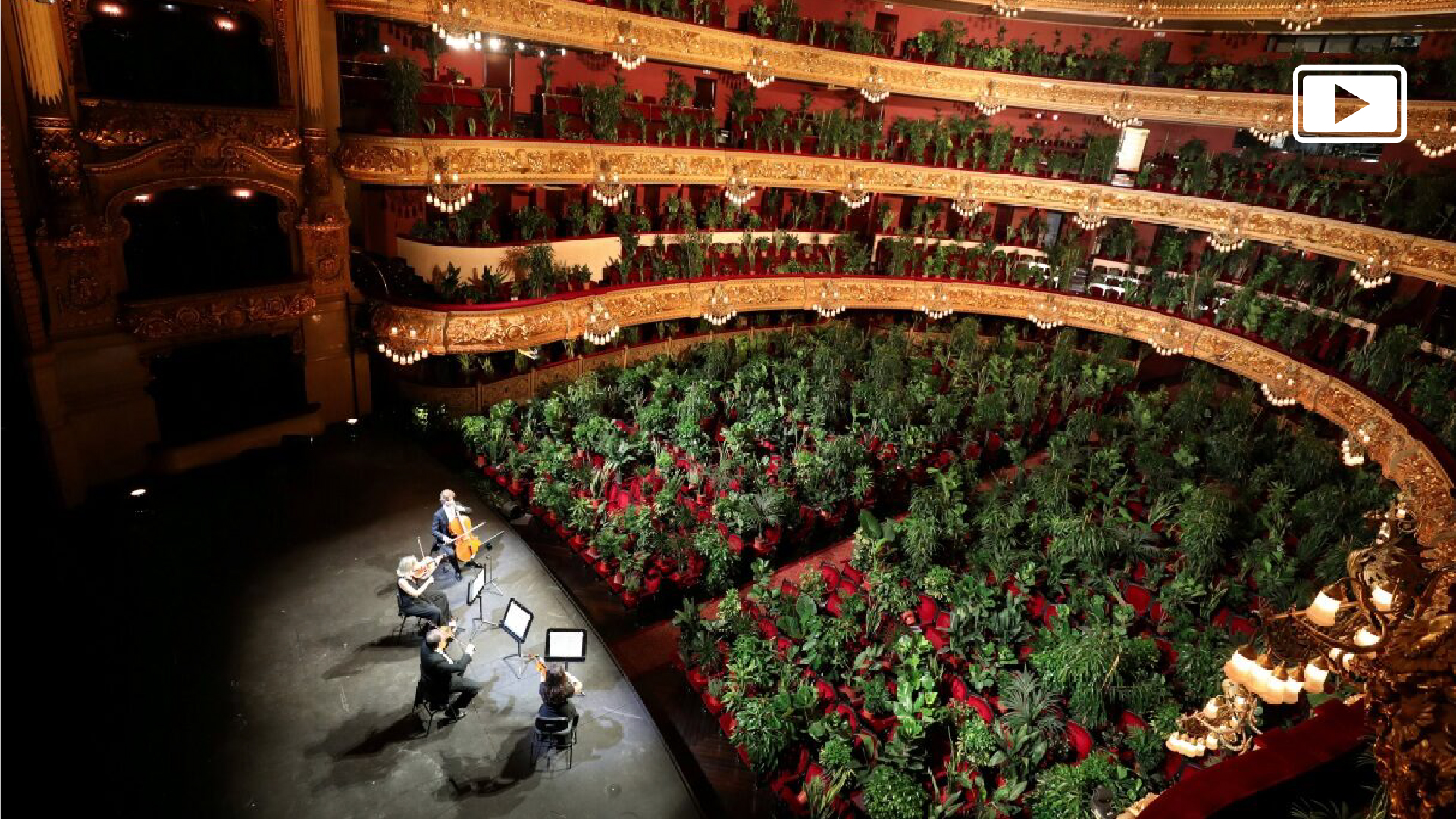 2 bin 300 bitkiye konser!